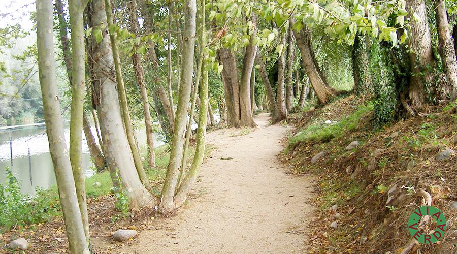 Ajuntament Bescanó. Millores ambientals